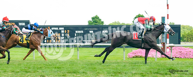 Sweet Butterfly winning at Delaware Park on 7/20/15