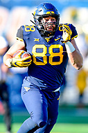 Morgantown, WV - NOV 10, 2018: West Virginia Mountaineers tight end Trevon Wesco (88) picks up a first down late in the 3rd quarter of game between West Virginia and TCU at Mountaineer Field at Milan Puskar Stadium Morgantown, West Virginia. (Photo by Phil Peters/Media Images International)