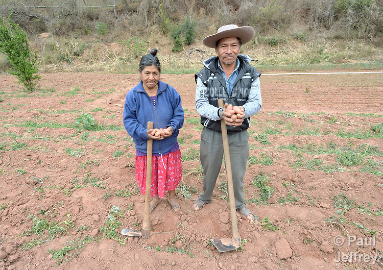 Edulia Vaquera and Gregorio Galarza display potatoes they have harvested from their garden in the Guarani indigenous village of Kapiguasuti, Bolivia. They and their neighbors started the gardens with assistance from Church World Service, supplementing their corn-based diet with nutritious vegetables and fruits.