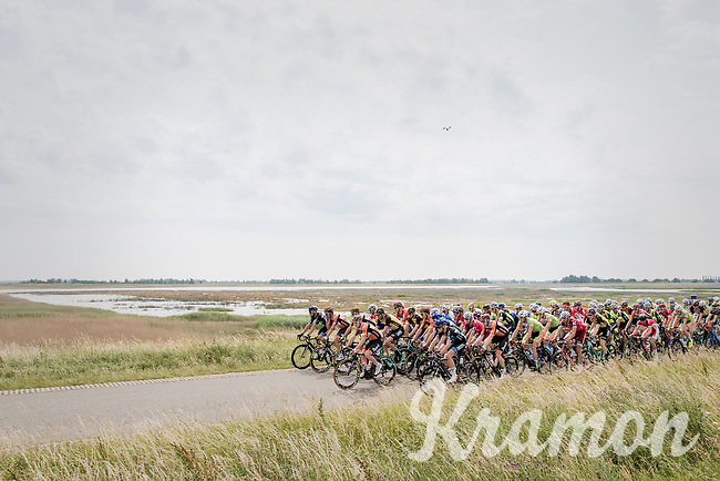 peloton cruises the typical Zeeland poldes<br /> <br /> Ster ZLM Tour (2.1)<br /> Stage 2: Tholen &gt; Hoogerheide (186.8km)