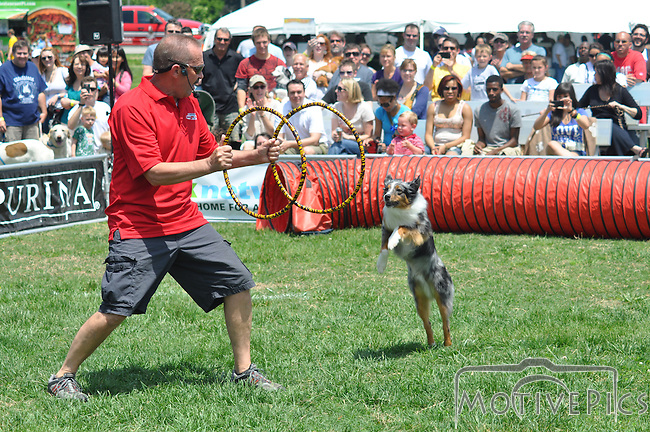 It's a dog day in St. Louis as canines of all breeds descend on Forrest Park for, Bark in the Park 2011.