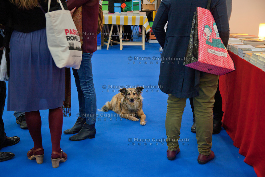Italia Torino Salone del libro 2014  un cane in mezzo agli stand