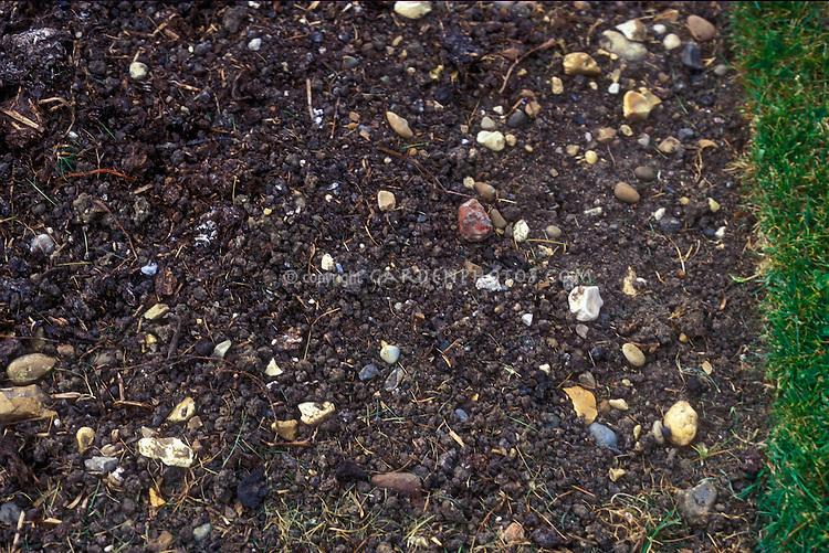 Spent mushroom compost, soil amendment, closeup in garden