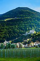 Italy, South Tyrol (Trentino - Alto Adige), Val Venosta, village Lichtenberg with castle ruin Lichtenberg   Italien, Suedtirol (Trentino - Alto Adige), Vischgau, Dorf Lichtenberg mit der Burgruine Lichtenberg
