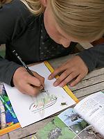 Mädchen, Kind malt Heuschrecke ab, die Heuschrecke sitzt auf dem Blatt Papier, außerdem ein Bestimmungsbuch, Roesels Beißschrecke, Metrioptera roeselii