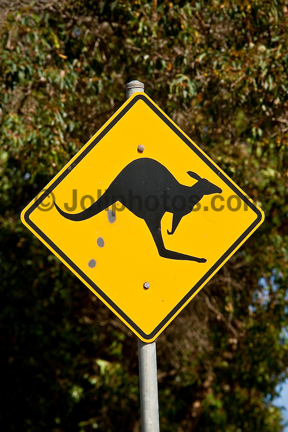 A kangaroo road sign in the Margaret River area in the south west corner of Western Australia. Photo: joliphotos.com
