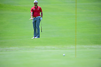 Jon Rahm (ESP) chips on 5 during round 4 of the World Golf Championships, Mexico, Club De Golf Chapultepec, Mexico City, Mexico. 3/5/2017.<br /> Picture: Golffile | Ken Murray<br /> <br /> <br /> All photo usage must carry mandatory copyright credit (&copy; Golffile | Ken Murray)