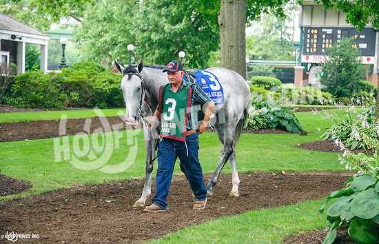 Savings Account before The Robert G. Dick Memorial Stakes (gr 3) at Delaware Park on 7/9/16