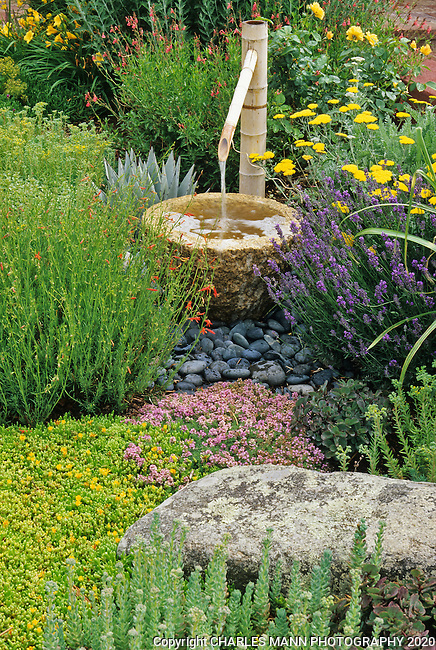 A water saving xeriscape design by  Monica Hellweggen and Azul Cobb of Carlotta from Paradise, in Santa Fe, NM, features a number of drought tolearnt plants including salvia, daylily, broom, Hesperaloe, penstemon and sedum.