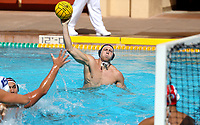 Stanford Waterpolo M vs San Jose State, September 29, 2018