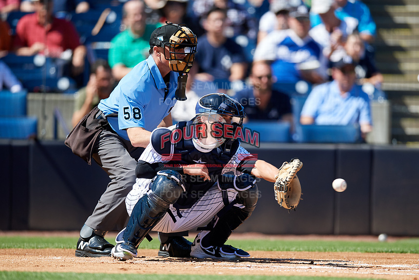 New York Yankees catcher Kyle Higashioka (66) and home plate umpire Dan Iassogna during a Grapefruit League Spring Training game against the Toronto Blue Jays on February 25, 2019 at George M. Steinbrenner Field in Tampa, Florida.  Yankees defeated the Blue Jays 3-0.  (Mike Janes/Four Seam Images)
