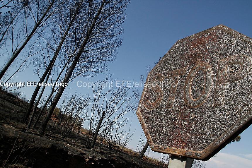 Fecha: 12-08-2013. (Seadur, Larouco Ourense) Incendio forestal, 500 hectareas ardidas, hubo perdidas en viñedos