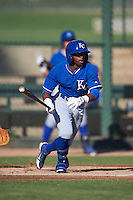 Kansas City Royals Rudy Martin (9) during an instructional league game against the San Francisco Giants on October 23, 2015 at the Papago Baseball Facility in Phoenix, Arizona.  (Mike Janes/Four Seam Images)