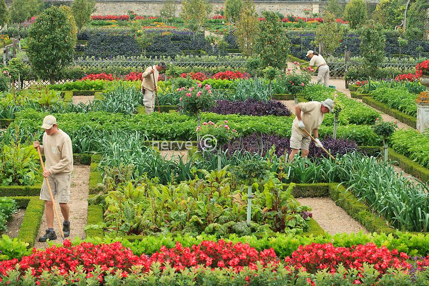 """France, Jardins du château de Villandry, les jardiniers dans le potager traité à la française // France, Gardens of the castle of Villandry, the gardeners in the kitchen garden treated like a """"jardin à la française""""."""