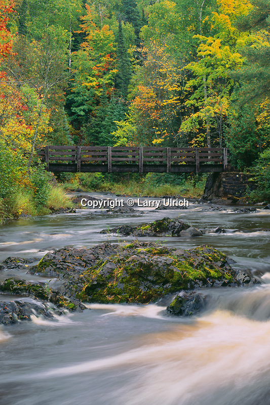 River Trail<br /> Black River<br /> Pattison State Park<br /> Douglas County, Wisconsin