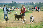Dog owner walking dogs in park.