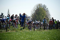 the bunch<br /> <br /> 50th Amstel Gold Race 2015