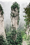 Mountain spire covered in trees at Zhangjiajie National Forest Park, Zhangjiajie, Hunan, China Image © MaximImages, License at https://www.maximimages.com