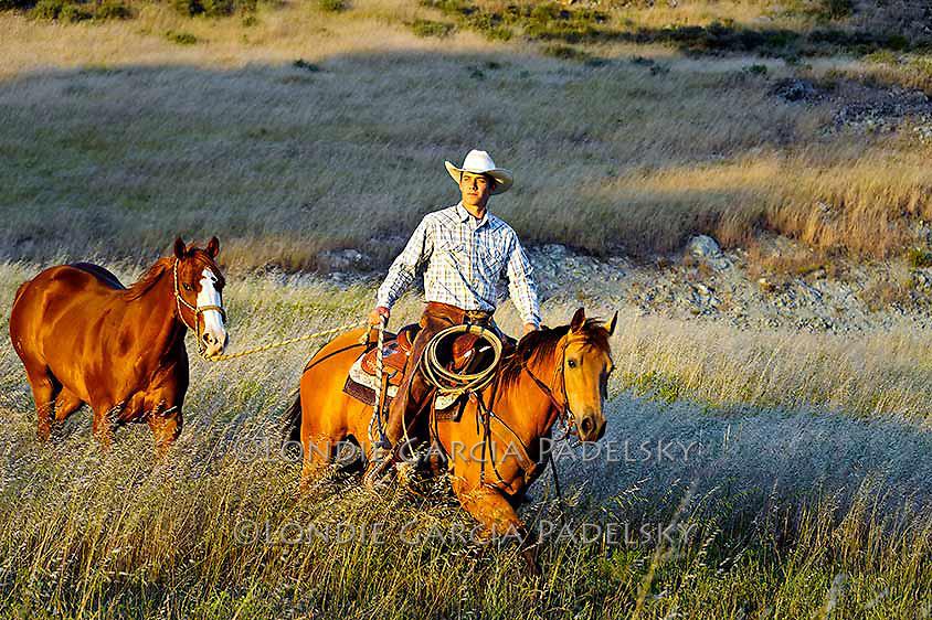 Cowboy leading horse at sunset, San Luis Obispo, California