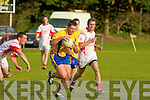 Francis Crowley Beaufort Niall Fitzgerald Waterville