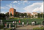 CIRCOSCRIZIONE 6 - Campi di calcio di via Petrella