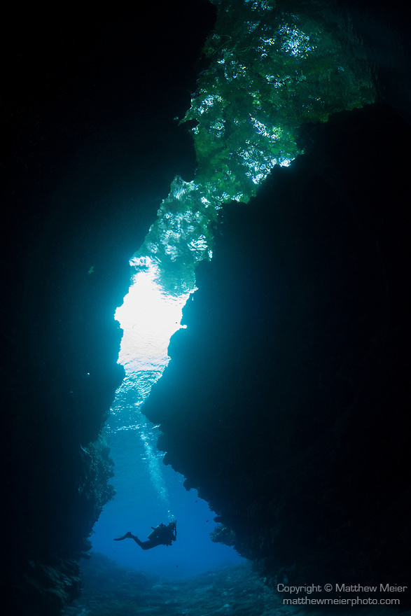 Marovo Lagoon, Solomon Islands; a scuba diver is silhouette in the blue water of an underwater cavern with overhanging trees and the sun visible overhead