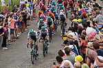 The peloton led by Bora-Hansgrohe with Daniel Oss (ITA) and Peter Sagan (SVK) on a cobbled sector at Thiméon during Stage 1 of the 2019 Tour de France running 194.5km from Brussels to Brussels, Belgium. 6th July 2019.<br /> Picture: ASO/Pauline Ballet | Cyclefile<br /> All photos usage must carry mandatory copyright credit (© Cyclefile | ASO/Pauline Ballet)