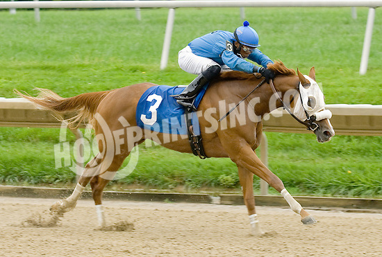 Include Me Sir winning at Delaware Park on 9/7/11.