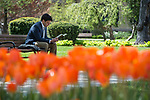BJ 4.24.17 Main Quad 2524.JPG by Notre Dame Photography