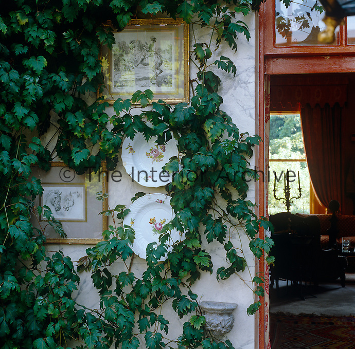 Antique plates and gilt-framed paintings are arranged amongst trailing plants on a wall of this conservatory extension