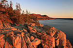 Sunrise on Otter Cliffs in the Fall, Acadia National Park, Maine, USA