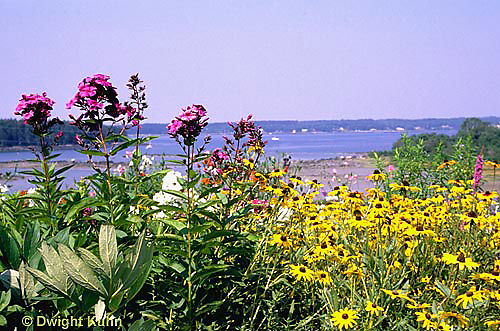 HB06-164x  Flower Garden