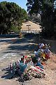 Isaac Brott Roadside Memorial _ Day 13