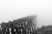 The remnants of a century old railway used for gold mining disappears into the foggy mist.