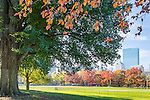 Autumn in Boston Common, Boston, Massachusetts, USA