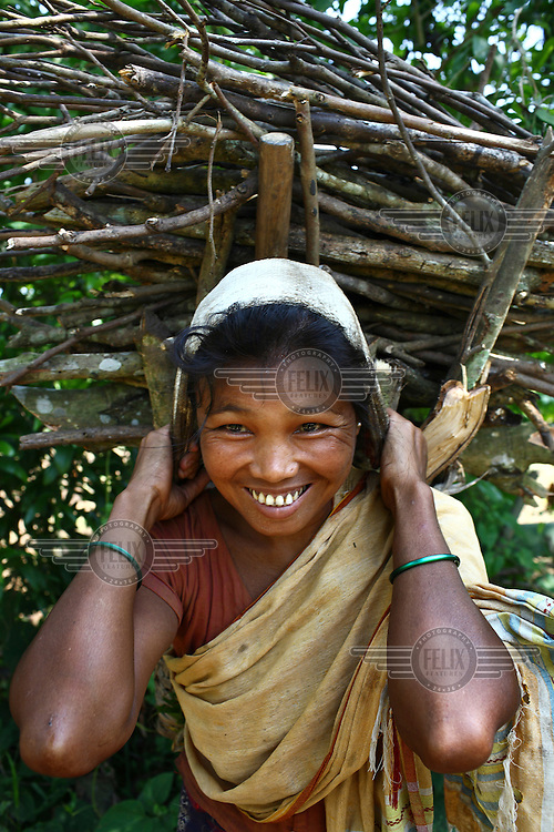 A Garo woman carries a heavy load of firewood, collected in the forest. The Garo (or Mandi, as they refer to themselves) are an ethnic minority thought to be of Tibeto-Burmese origin. Prior to British rule they were mostly anamists but missionary work led the majority to convert to Christianity. The Garo of the Madhupur forest have long been under the threat of eviction by the government and the forest that they gain much of their livelihood from is being rapidly destroyed by unregulated logging.