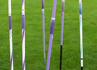 2013 Symbolmotive zum Thema Leichtathletik