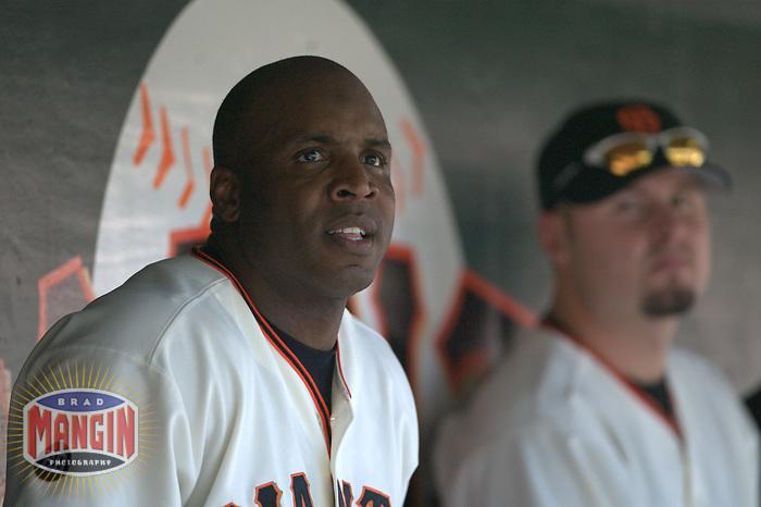 Barry Bonds. Milwaukee Brewers vs San Francisco Giants. San Francisco, CA 9/13/2003 MANDATORY CREDIT: Brad Mangin