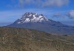 Tanzanie. Ascension du Kilimandjaro (5895 m) par la voie Lemosho et Machamé. Vue sur le volcan Mawenzi (5149 m) depuis le campement de Barafut (4700 m).
