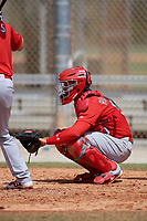St. Louis Cardinals catcher Julio Rodriguez (90) during a Minor League Spring Training Intrasquad game on March 28, 2019 at the Roger Dean Stadium Complex in Jupiter, Florida.  (Mike Janes/Four Seam Images)
