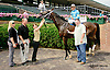 Over and Back winning at Delaware Park racetrack on 7/14/14