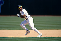 OAKLAND, CA - Rickey Henderson of the Oakland Athletics steals a base during a game at the Oakland Coliseum in Oakland, California in 1994. Photo by Brad Mangin