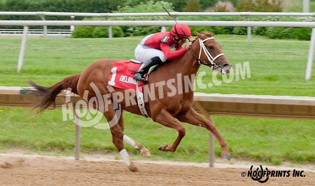 Ile St. Molly winning The Our Mims Stakes at Delaware Park on 5/18/13