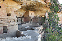 Balcony House, 13th century, a Native American Puebloan dwelling in Mesa Verde National Park, Montezuma County, Colorado, USA. The house contains 45 rooms and 2 kivas, is made from sandstone blocks, mortar and wooden beams and is well defended due to its only access involving a cliff climb. Mesa Verde is the largest archaeological site in America, with Native Americans inhabiting the area from 7500 BC to 13th century AD. It is listed as a UNESCO World Heritage Site. Picture by Manuel Cohen