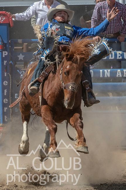 First Place Saddle Bronc rider Jesse Wright from Milford, Utah scores 88 points at the 68th annual Oakdale Saddle Club Rodeo on Sunday, April 14, 2019.  (Al Golub/Record Photo)