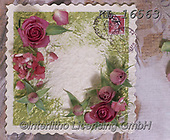 Interlitho-Alberto, FLOWERS, BLUMEN, FLORES, photos+++++,roses,KL16563,#f#, EVERYDAY ,napkins