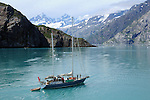 a sailing yacht motors through Glacier Bay National Park in Alaska