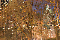 THIS IMAGE IS AVAILABLE EXCLUSIVELY FROM GETTY IMAGES.....Please search for image #200535108-001 on www.gettyimages.com ....Fall Foliage and Trees in Central Park Illuminated at Dusk, Buildings on West 59th Street (Central Park South) in the Distance, New York City, New York State, USA