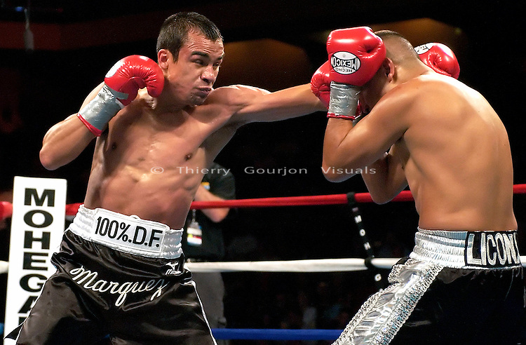 Juan Manuel Marquez (black trunk small white stripe) and Marcos Licona during their 10 rounds Featherweight fight at The Mohegan Sun  Casino in Uncasville, CT on 06.16.03. Marquez won by TKO in the 9th round