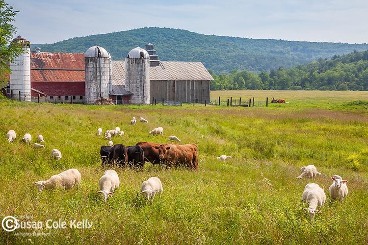 A farm in Athens, VT, USA